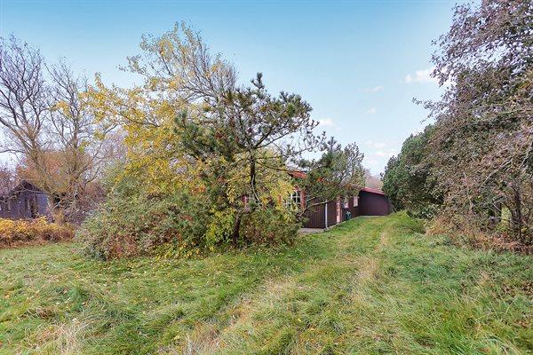 Sommerhus, 10-3115