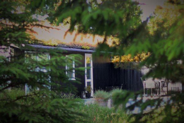 Ferienhaus, 14-0682
