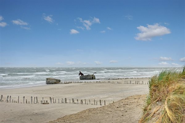 Holiday home, 26-0388