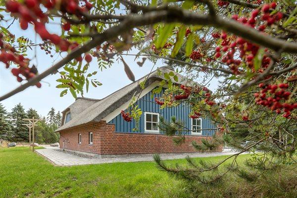 Sommerhus, 29-2006