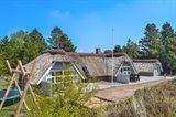 Stuga 29-2354 Römö, Vesterhede