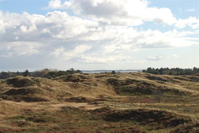 Gæstebog Sommerhus 29-2677 Rømø, Sydøen