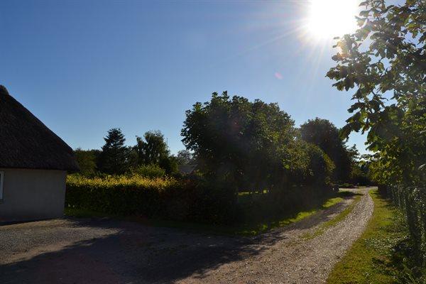 Sommerhus, 29-3910