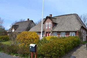 Ferienhaus 29-5064 Höjer