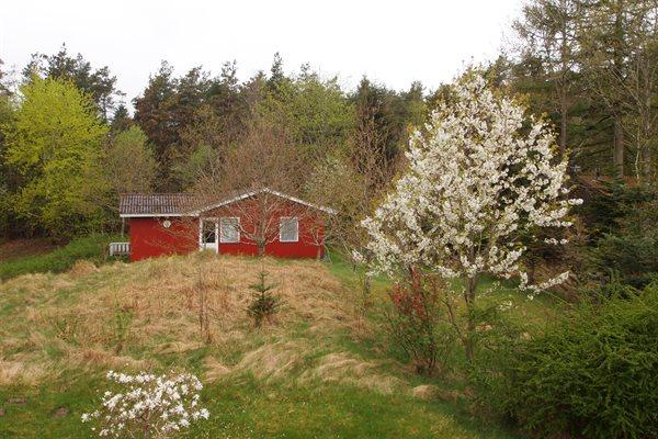 Ferienhaus, 46-0003