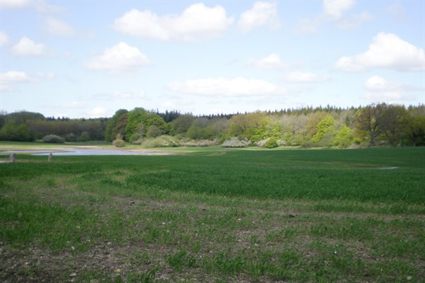 Herregård, 63-1200