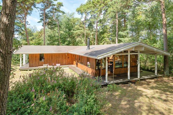 Ferienhaus 81-0146 - Dänemark