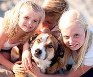 D�nemarkurlaub mit Hund