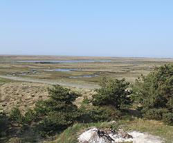 Rønnerne vom Aussichtsturm beim Læsø Salzsiederei gesehen