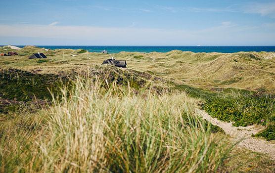 Ferienhäuser liegen oft in Gebieten mit einer wunderschönen Natur und nur einen kleinen Spaziergang vom Meer entfernt.