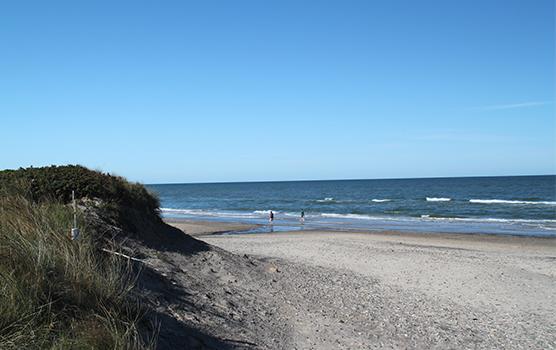 Udsigt over klitterne, stranden og havet.