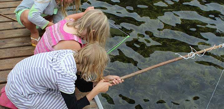 Tre piger fisker fra en mole.