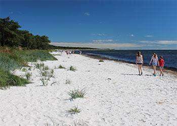 Der Ostsee
