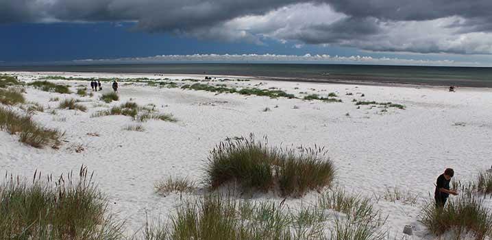 Feiner Sandstrand mit Dünen