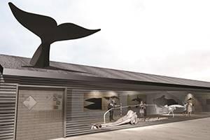 Hytte med hvaler