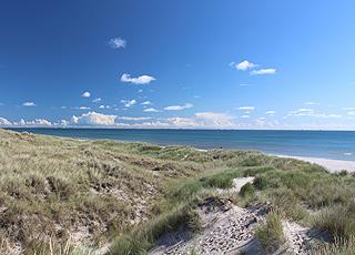 Der Strand von Ålbæk ist breit, hat niedrige, vor Wind Schutz gebende Dünen und seichtes, kinderfreundliches Wasser