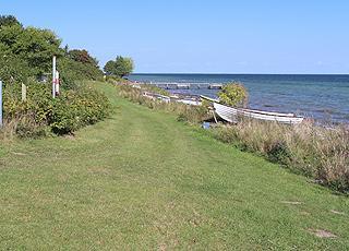 Grønne områder bag stranden i sommerhusområdet Bøsøre