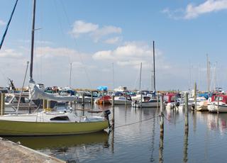 Den hyggelige lystbådehavn i Bork Havn
