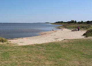 Fin, lille sandstrand ved Ringkøbing Fjord i Bork Havn