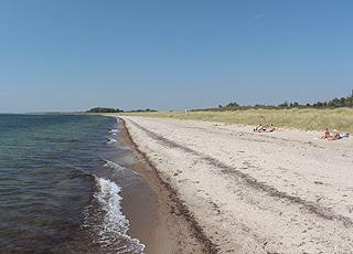 Dejlig sandstrand med små klitter i ferieområdet Bredfjed på Sydlolland