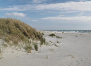 Ved Bunken kan I bade ved en dejlig strand med fint, hvidt sand