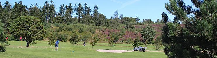Sommerhusene i Dejbjerg ligger tæt ved Dejbjerg Golfklub