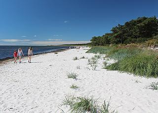 Dejlig, hvid sandstrand ved sommerhusområdet Dueodde Ferieby