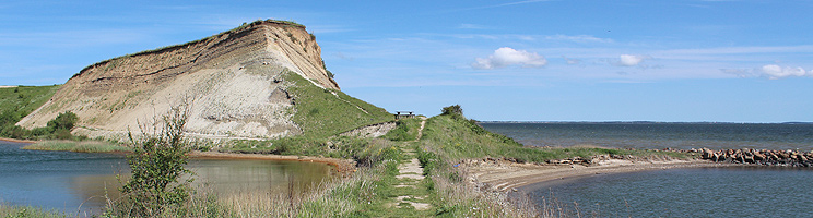 Der Steilhang Ejerslev Klint am kleinen Hafen im Ferienhausgebiet Ejerslev, Mors