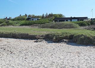 Sommerhuse i grønne omgivelser bag sandstranden i Ejsingholm