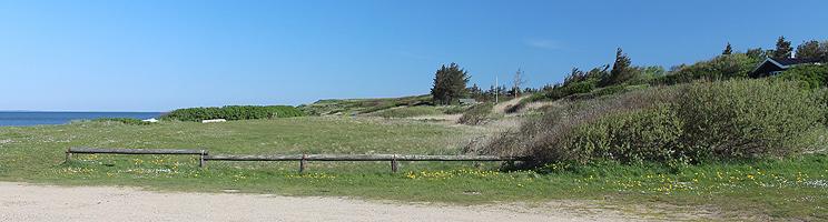 Sommerhuse i bakkerne bag kysten i Ejsingholm