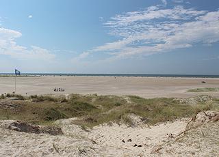 Udsigt over den brede, fine sandstrand i Fanø Bad