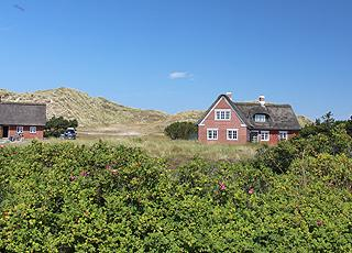 Sønderhos sommerhuse ligger i smukke, kuperede klitområder mellem byen og stranden