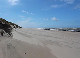 Udsigt mod syd ved Fjaltrings sandstrand med høje klitter