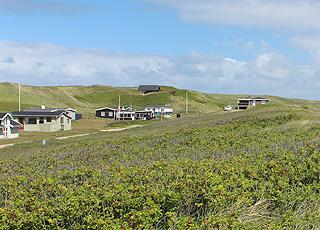 Sommerhusene i Fjand ligger i grønne omgivelser, lige bag Vesterhavets klitter