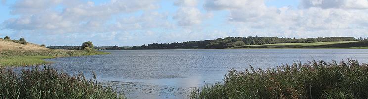 Sjørup Sø ved Gatten er omgivet af skove, grønne områder og sommerhuse