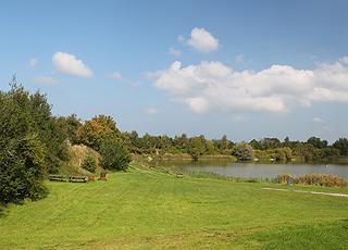 De grønne områder ved fiskesøen i Gøttrup