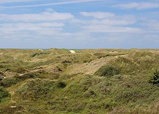 Det naturskønne klitområde mellem stranden og sommerhusene i Grærup