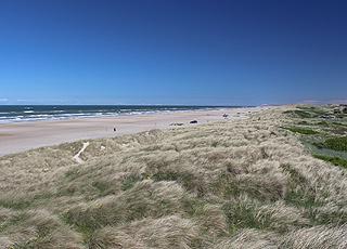 Grønhøjs brede sandstrand mod nord
