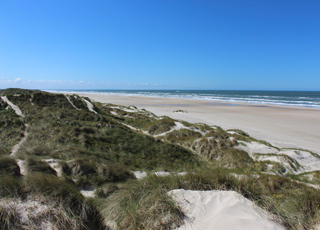 Stranden syd for Grønhøj fra klitterne