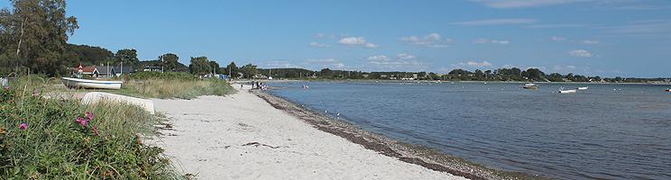 Dejlig sandstrand med lavt, børnevenligt vand ved sommerhusområdet Grønninghoved