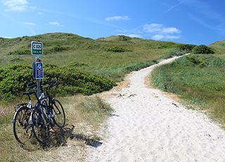 Sti til stranden gennem det grønne klitområde i Haurvig