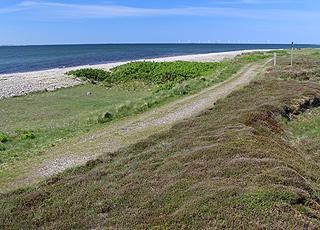 Heidebewachsene Naturlandschaften hinter der Küste von Helligsø