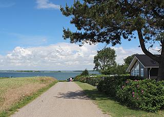 Sommerhuse i grønne omgivelser bag stranden i Horne