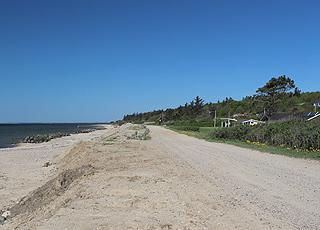 Sommerhuse i grønne omgivelser bag stranden i Hostrup