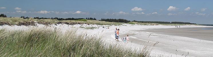 Ein Sommertag am kinderfreundlichen Sandstrand mit Dünen in Hou