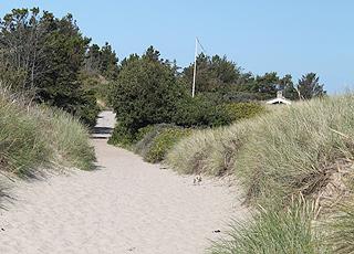 Sti fra stranden i Hulsig til det hyggelige sommerhusområde