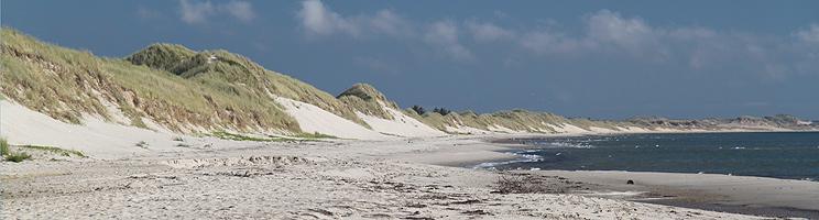 Hulsigs strand med fint, hvidt sand og høje klitter