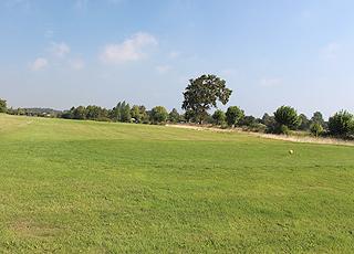 Sommerhusene i Humble ligger lige ud til Langelands Golfklub