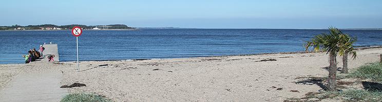 Der Sandstrand in Hvalpsund bietet einen Badesteg, Palmen und Aussicht über Salling