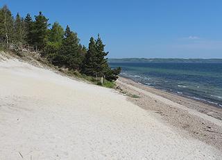 Den høje sandklit, Hvidbjerg Klit, ved stranden i sommerhusområdet Hvidbjerg